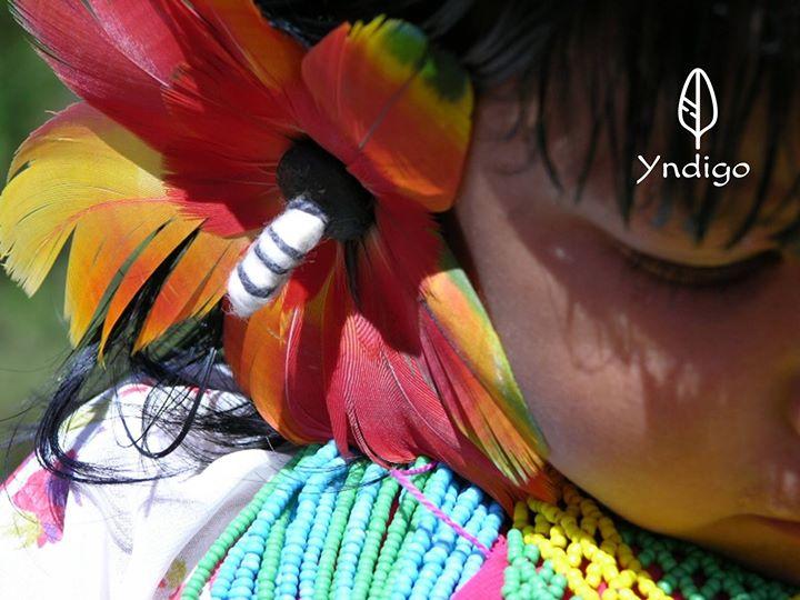 » Curso Cura Xamânica da Amazónia «