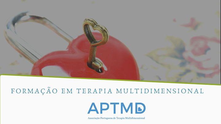 Formação em Terapia Multidimensional Porto