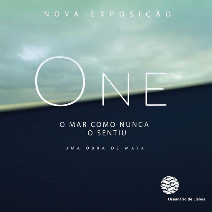 ONE, O mar como nunca o sentiu   Oceanário de Lisboa