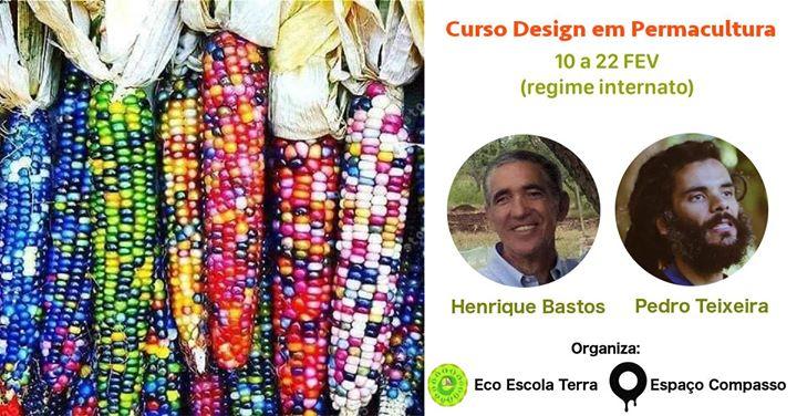 Curso Design em Permacultura