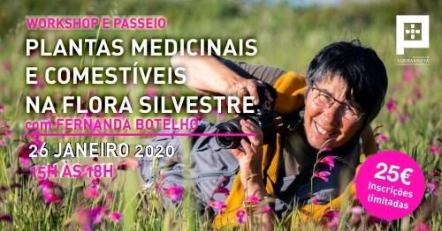 Workshop e Passeio Plantas Medicinais e comestíveis