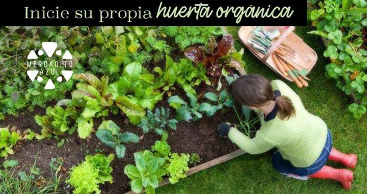 Taller: Inicie su propia huerta orgánica