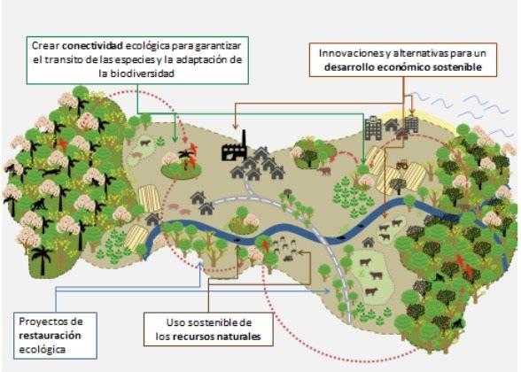 Charla 'Corredores Biológicos Interurbanos y Cambio Climático'