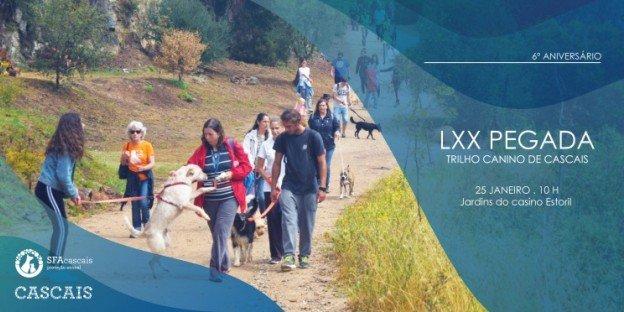 6 º Aniversário - Trilho Canino de Cascais - LXX Pegada