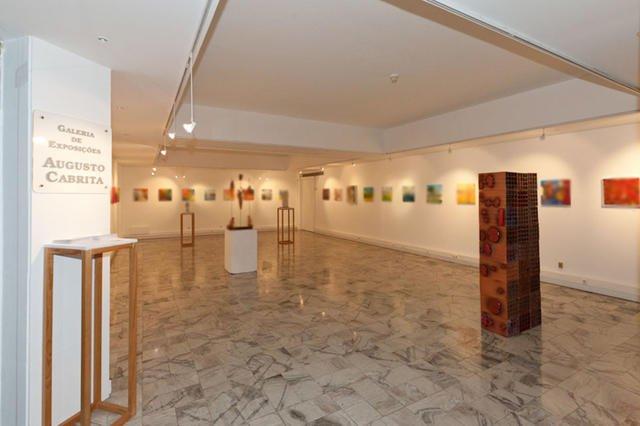 Hoje a Galeria É Nossa... Vamos Criar Uma Exposição
