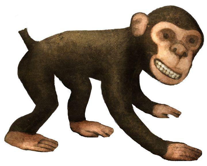 O Macaco do Rabo Cortado [Literaturinha]