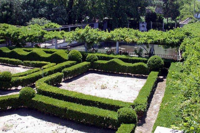E Agora Que o Jardim Está a «Acordar»...