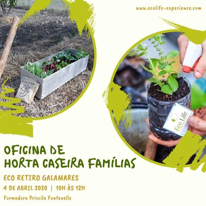 Horta Caseira   Especial Famílias