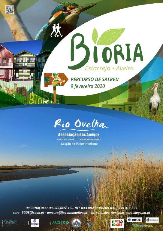 Percurso de Salreu – BioRia – Estarreja