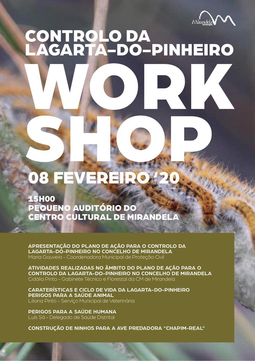 Controlo da Lagarta-do-Pinheiro - Workshop