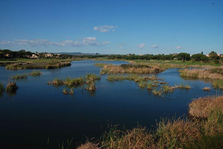 Workshop: A Importância dos Ecossistemas de Água Doce - 2ª Ed.