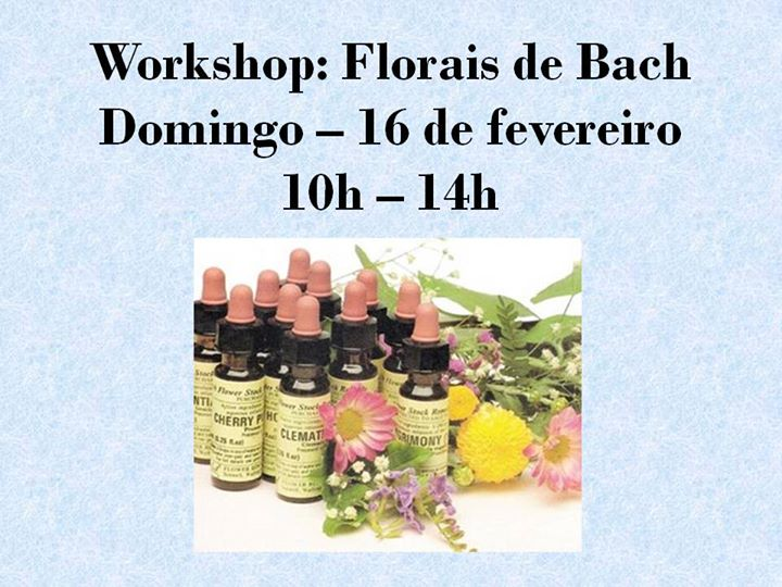 Workshop: Florais de Bach