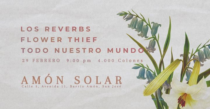 Concierto bisiesto: TNM, Flower Thief & Los Reverbs.