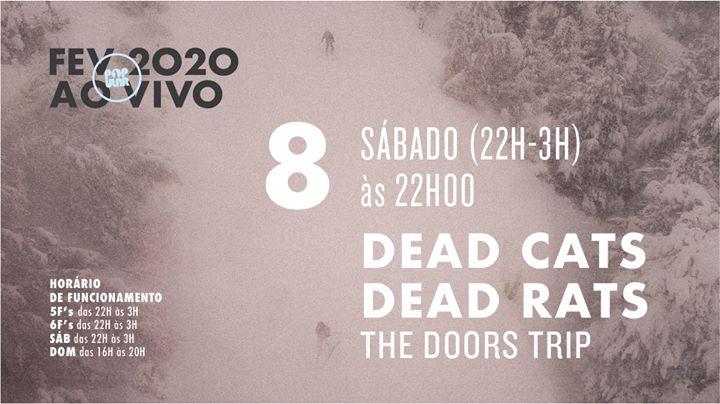 Dead Cats Dead Rats - The Doors Trip