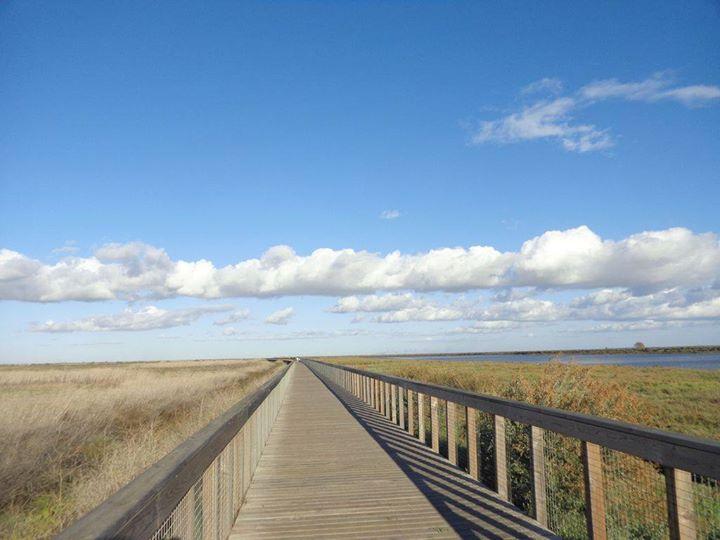 Caminhando nos Passadiços do Tejo