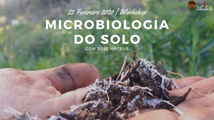 Workshop de Microbiologia do Solo