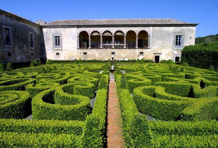 Visita Guiada à Qta e Palácio da Bacalhôa + Prova de Vinhos