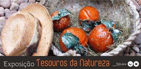 """Exposição de cerâmica """"Tesouros da Natureza"""""""