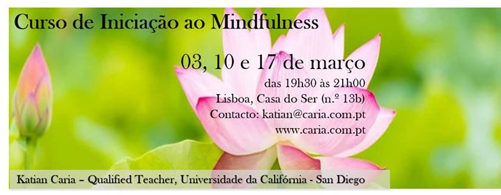 Beginners' course in Mindfulness