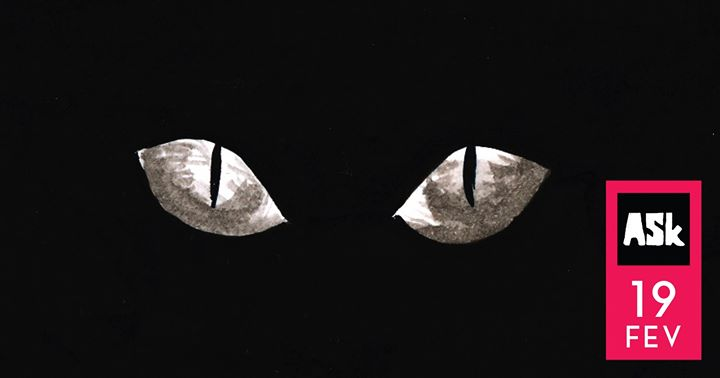 À noite todos os gatos são pardos
