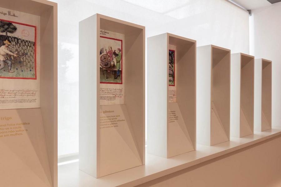 Museu de História e Etnologia da Terra da Maia - agenda março I 2020