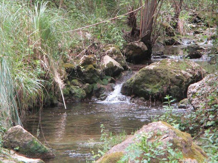 Caminhando das Azenhas à Foz do Rio da Mata