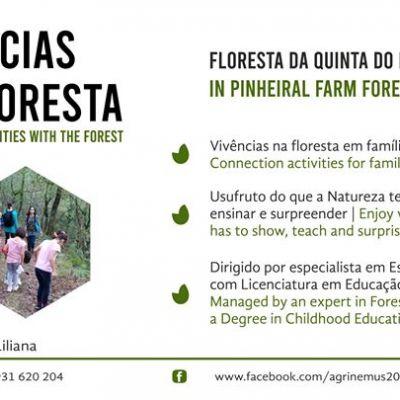 Vivência na Floresta | 7aos10anos