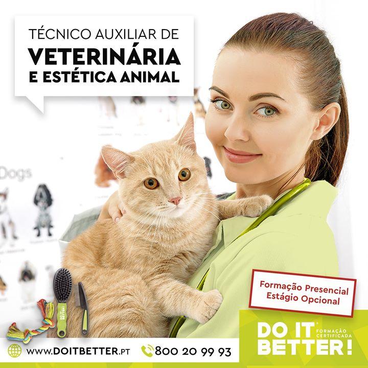 Curso Técnico Auxiliar de Veterinária e Estética Animal