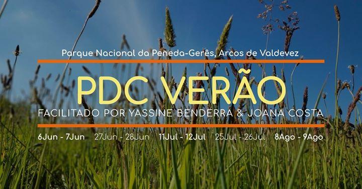 PDC Verão (Curso de Design de Permacultura)