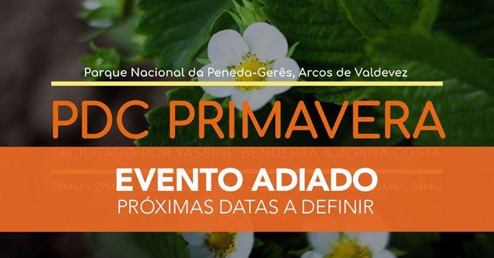 PDC Primavera (Curso de Design de Permacultura)