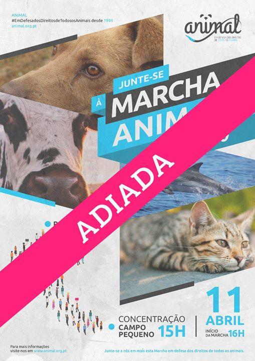 Marcha ANIMAL 2020