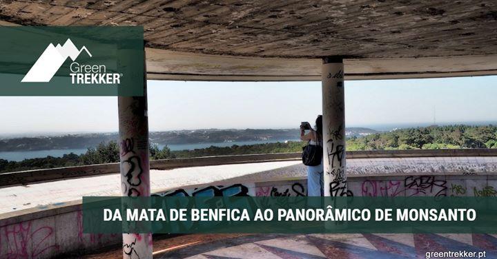 Da Mata De Benfica Ao Panorâmico De Monsanto