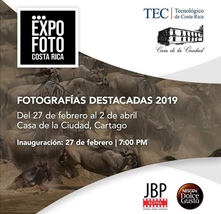 Expo Foto 2019. Fotografías destacadas