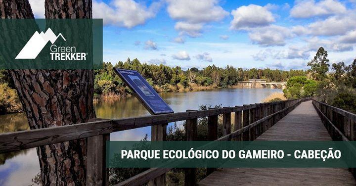 Parque Ecológico do Gameiro - Cabeção
