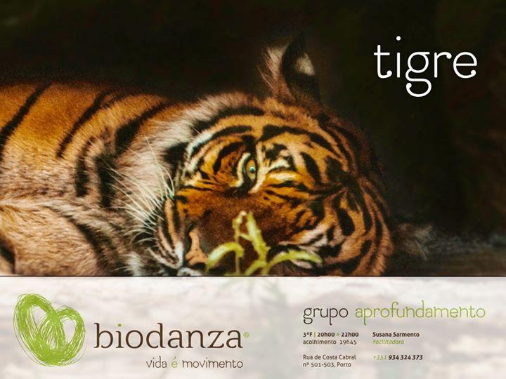Biodanza, vida é movimento * Grupo Regular de Aprofundamento