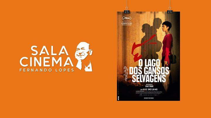 O lago dos gansos selvagens - Cinema Fernando Lopes