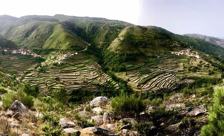 12 Meses 12 Desvios - Tibete Português - Sistelo