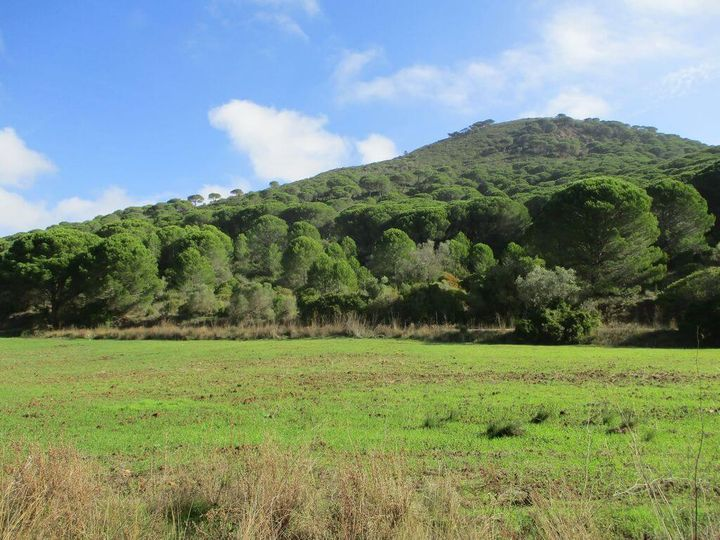 Grandes Caminhadas - Louro, Gaiteiros e São Luís - 28kms