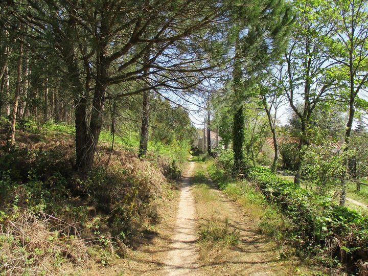 Grandes Caminhadas - Serras de Loures - 22kms