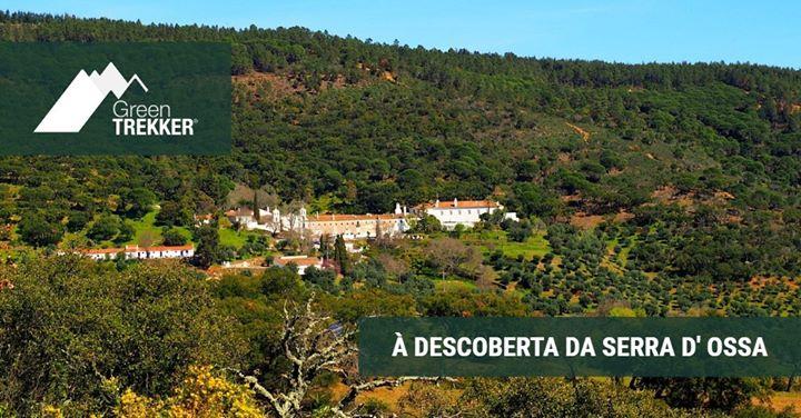 À descoberta da Serra d' Ossa