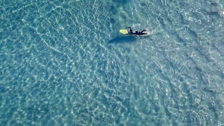 Int. Ocean Film Tour Vol 7 - Lisbon Premiere