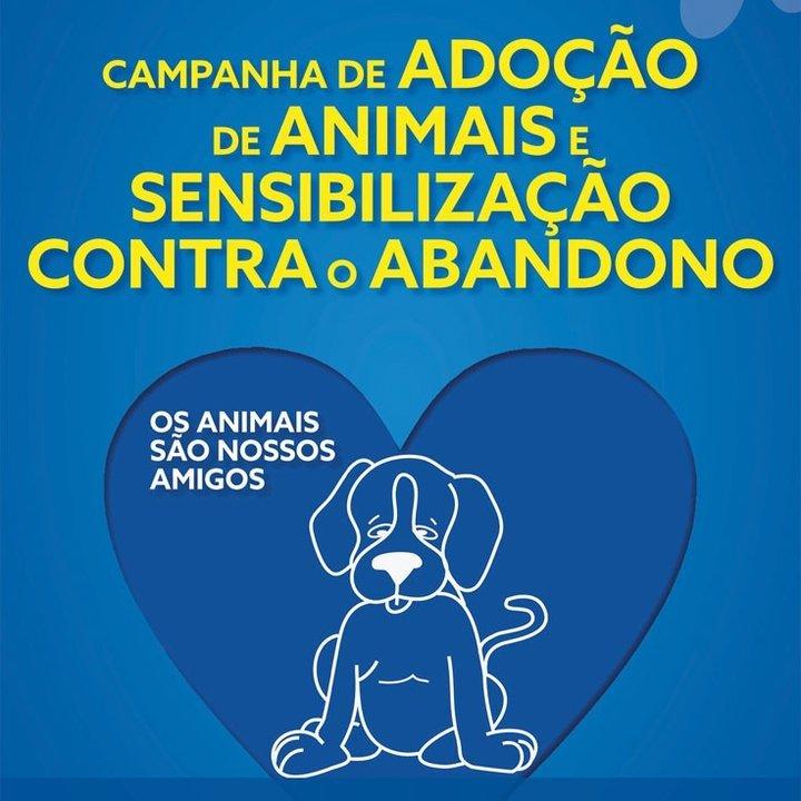 Campanha de adoção de animais