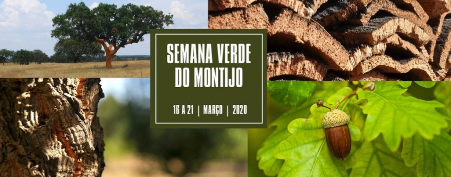 Semana Verde 2020