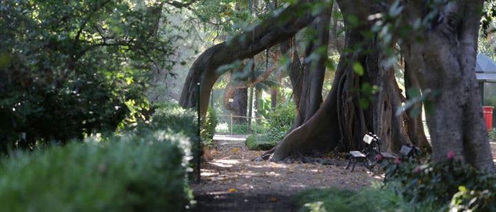 Jardim Botânico Lisboa e Museu N História Natural e da Ciência