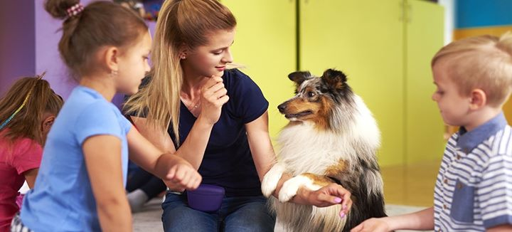 Animal Assisted Play Therapy | Workshop