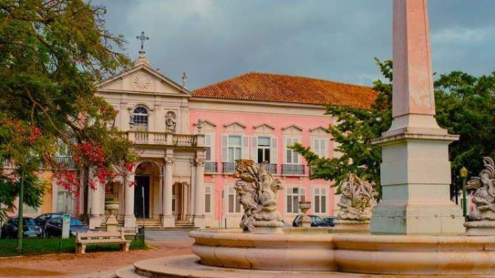 Visita Guiada à Tapada das Necessidades e Jardim da Estrela