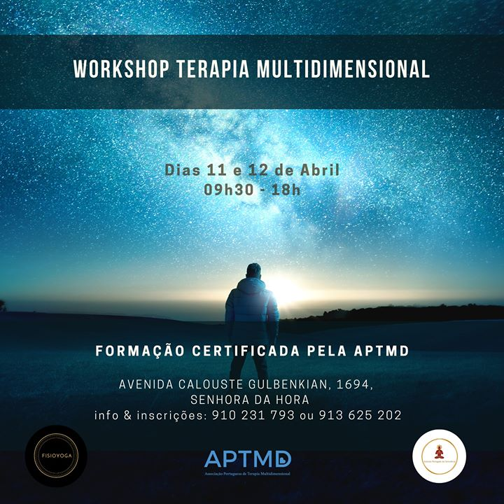 Workshop Terapia Multidimensional