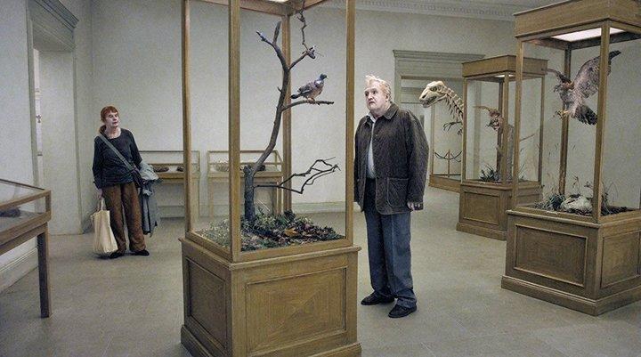 Um pombo pousou num ramo a refletir na existência (FEST cineclube) - SUSPENSO