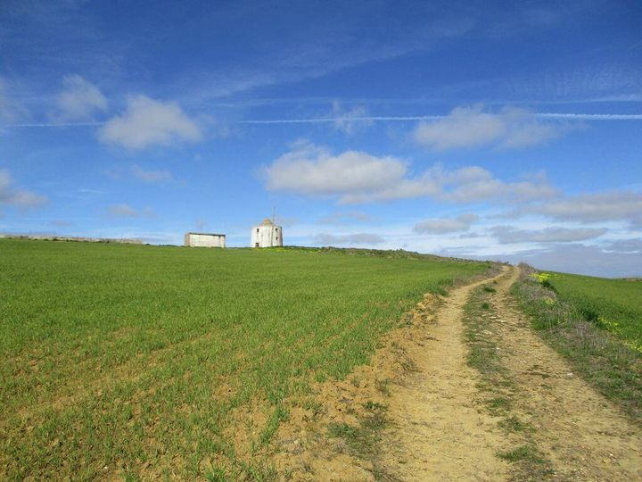 Caminhando em campos encantados