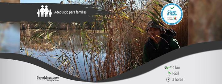 Atividade para Famílias - Descobrindo a Lagoa de Óbidos